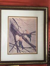 "Framed BIRD PRINT JOHN RUTHVEN SIGNED 21"" X 19"" Prothonotary Warblers BIRD"