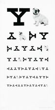 Original Vintage Yale Eye Chart Poster by Paul Rand 1985 ca.