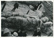GIRGENTI c. 1935 - Telamon du Temple de Zeus  Sicile  Italie - DIV 6571