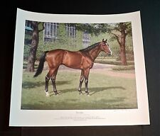 Richard Stone Reeves  -  Exceller -  Collectible Famous Race Horse Print