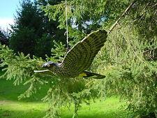 Aquila volando XXL BELLISSIMA Gartendeko o balcone ca 68cm piccioni Schreck