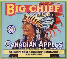 APPLE CRATE LABEL CANADA BIG CHIEF INDIAN BRITISH COLUMBIA ORIGINAL 1950S EMPIRE
