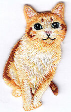 CAT - KITTEN - KITTY - PETS - ANIMALS - CUTE CRITTER - Iron On Embroidered Patch