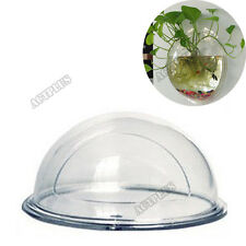 Wall Mount Fish Tank Aquarium Plant Hanging Pot Bowl Bubble Aquarium NEW