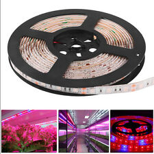 5M 5050 SMD 60-300LED Strip Plant Grow Light For Spectrum Aquarium Hydroponic