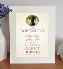 "Dobermann 10"" x 8"" Mounted Breed Traits Print Picture Novelty Doberman Gift Idea"