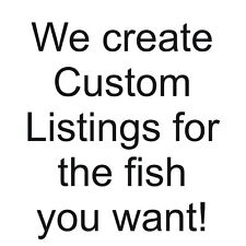 A special listing for another African Cichlid lover, xscarefacex
