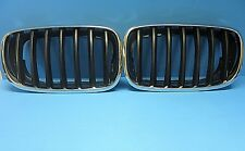 Set Left & Right Front Hood Grills Replace BMW OEM# 51137157687/8 X5 X6 Black