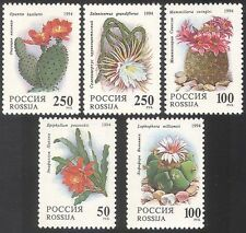 Russia 1994 CACTI/Cactus/Flowers/Succulents 5v  n17805