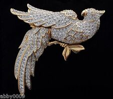 Signed Swan Swarovski Clear Crystal Parrot Brooch Pin