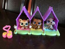 LPS Littlest Pet Shop Pet Triplets Baby Bears # 1554 1555 1556 + Accessories