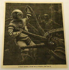 1882 magazine engraving ~ FIGHT BETWEEN  DIVER AND OCTOPUS