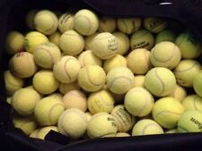 25 USED TENNIS BALLS. SUITABLE for DOGS