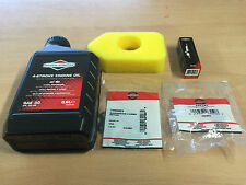 Briggs and Stratton Lawn Mower Service Kit Suitable For Classic And Sprint..