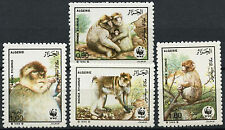 Algeria 1988 SG#989-992 Barbary Ape, WWF MNH Set #A91999