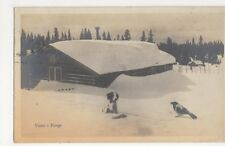 Norway, Vinter i Norge 1923 RP Postcard, B240