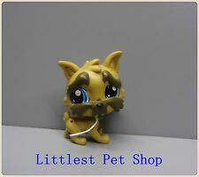 Littlest Pet Shop Brussels Griffon Sam 3969 dog  W BULE EYES  figure #D43