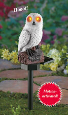 Solar Powered White Hooting Owl w/ Lighted Eyes Garden Stake KEEPS PESTS AWAY
