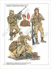 PLANCHE UNIFORMS PRINT WWII US ARMY Special Service Force Harrison Montana/Anzio