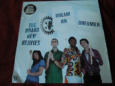 "The Brand New Heavies Dream On Dreamer RARE 12"" Single"