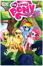MY LITTLE PONY FRIENDSHIP IS MAGIC #1 Subscription Variant - NM Comic Book - IDW