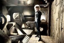 "LABYRINTH DAVID BOWIE MOVIE LEGEND  large Canvas Picture 20""x30"""