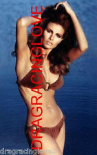 "Gorgeous Actress/Sex Symbol ""Raquel Welch"" 8x10 ""Pin Up"" PHOTO! #(15ab)"
