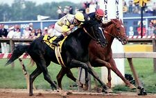 DVD SUNDAY SILENCE Vs EASY GOER Greatest Races Entire Triple Crown and more!