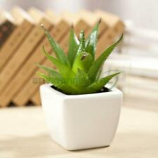 Short Aloe Grass Artificial Fake Plants Plastic Home Table Decors Potted Trees