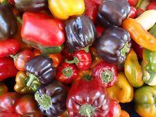 Heirloom Pepper Seed Collection- 10 Varieties- 700+ Seeds