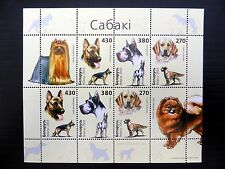 BELARUS 2003 Dogs Sheetlet of 8 SG556/8 U/M FP9569