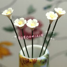 Dollhouse Miniature Living Room 5 pcs of Clay White Flowers SPO034