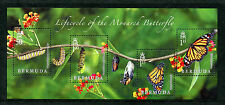 Bermuda 2016 MNH Lifecycle Monarch Butterfly 4v M/S Insects Butterflies Stamps