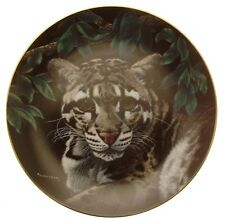 Natures Majestic Cats Asian Clouded Leopard plate GB74