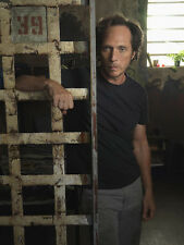 Prison Break UNSIGNED photo - E1780 - William Fichtner