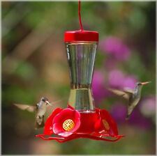 Perky Pet Hummingbird Pinch Waist Glass Humming Bird Feeder Lawn Garden Hanging