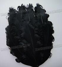 Wholesale lots 15color pick Curly Goose nagorie feather pad for appliques trim