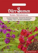 Rosen Balsaminen Impatiens balsamina Mix Fleißiges Lieschen ca. 50 Korn / Seeds