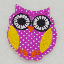 Owl bird  Embroidered Cloth Iron On Patch Sew Motif Applique badg