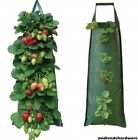 2 x Fabric Hanging Planter Grow Bag Pouch Tomato Herbs Flowers Strawberries