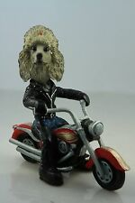 POODLE SILVER    ON A   MOTORCYCLE SEE ALL BREEDS & BODIES @ EBAY STORE