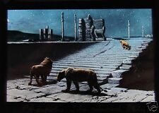Glass Magic Lantern Slide PERSEPOLIS THE RUINED CITY OF PERSIA C1900