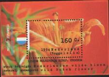 Nederland NVPH 1604 Vel Natuur en Milieu Roggelelie 1994 Postfris