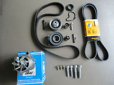 ALH TDI LONG LIFE TIMING BELT KIT GOLF JETTA NEW BEETLE OEM DAYCO $275 SHIPPED