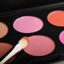 Stock 10 Colors Cosmetic Blush Blusher Powder Palette Beauty Face Makeup Set