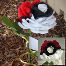 50Pcs New  Breed Black Pearl Rose Seeds Rare Roses Flower Seeds Pokemon Style