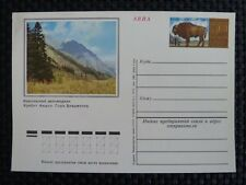 Russia ANIMALS Bison bisonte europeo Buffalo CARD a9350