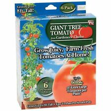Giant Tomato Tree Gardeners Choice 6 Pre-Seeded Pots As Seen On TV