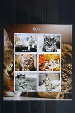 Katzen 18 cats Chats Tiere animals pets Fauna Block KB sheets postfrisch ** MNH