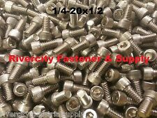 (25) 1/4-20x1/2 Socket Allen Head Cap Screw Stainless Steel 1/4 x 1/2